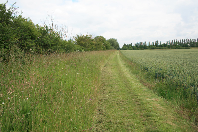 Grass Margins and Footpaths